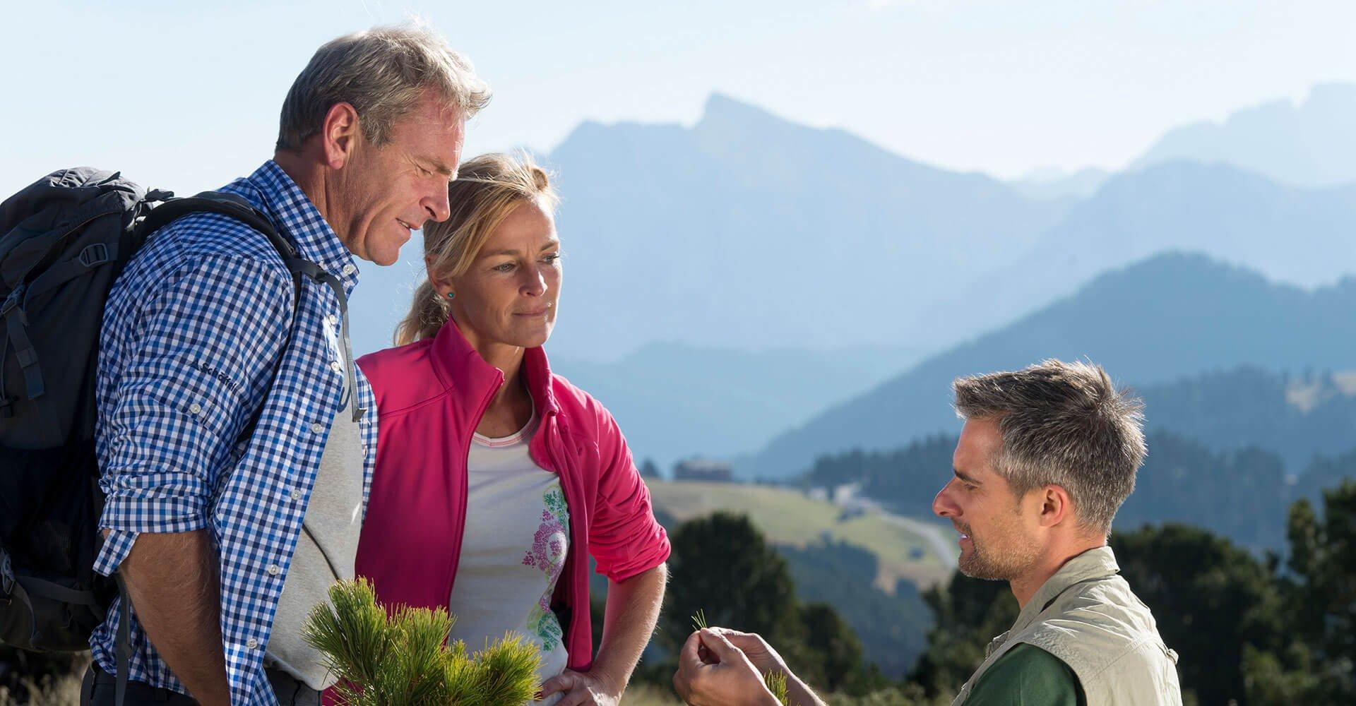 Gasthof Anich - Wandern in den Dolomiten