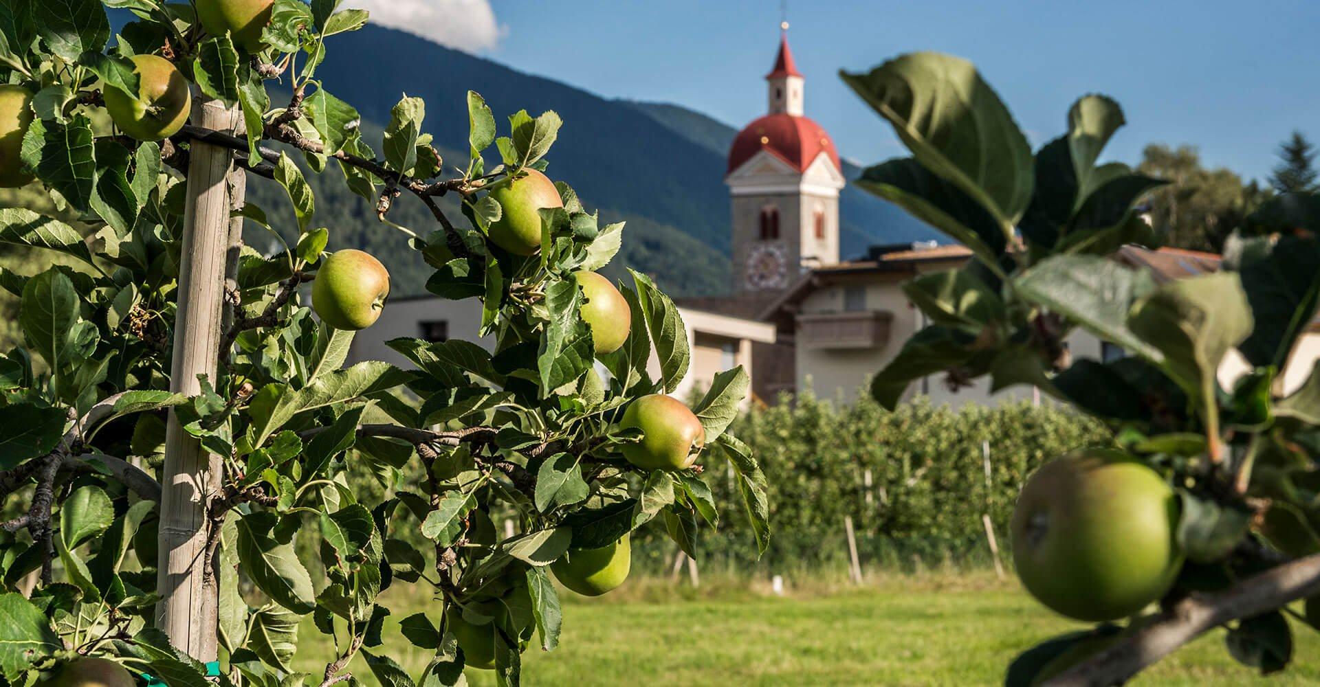 Gasthof Anich in Brixen